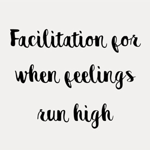Facilitation for when feelings run high